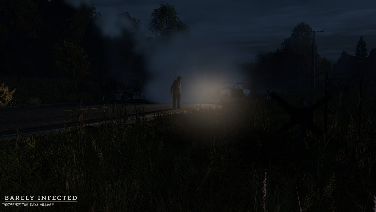 On a lootrun to Kamenka, Spaggie was waiting for me at the car. I decided to throw a smoke which caused this awesome screenshot!
