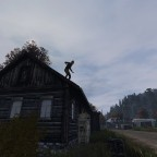 Zombie lookout on roof