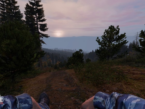 Just a nice day in dayz